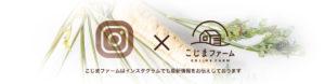 ブログページ用ヘッダー画像:こじまファーム