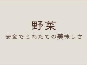 農園の野菜一覧:東京八王子こじまファーム